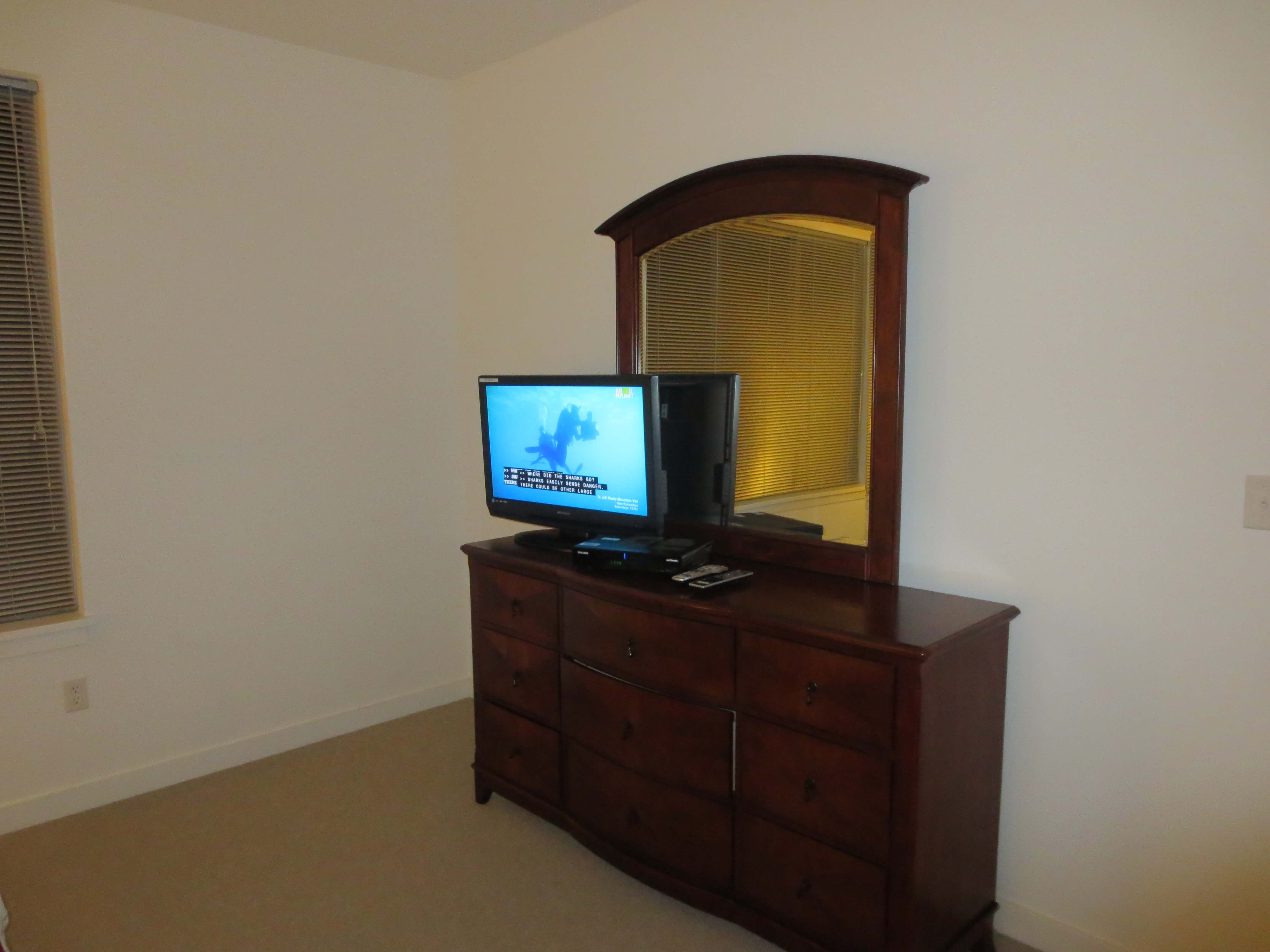 image 6 furnished 1 bedroom Apartment for rent in Stamford, Southwest CT