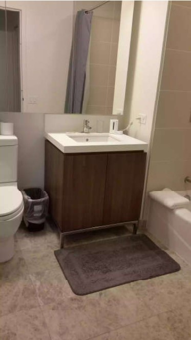 image 2 furnished 1 bedroom Apartment for rent in Loop, Downtown