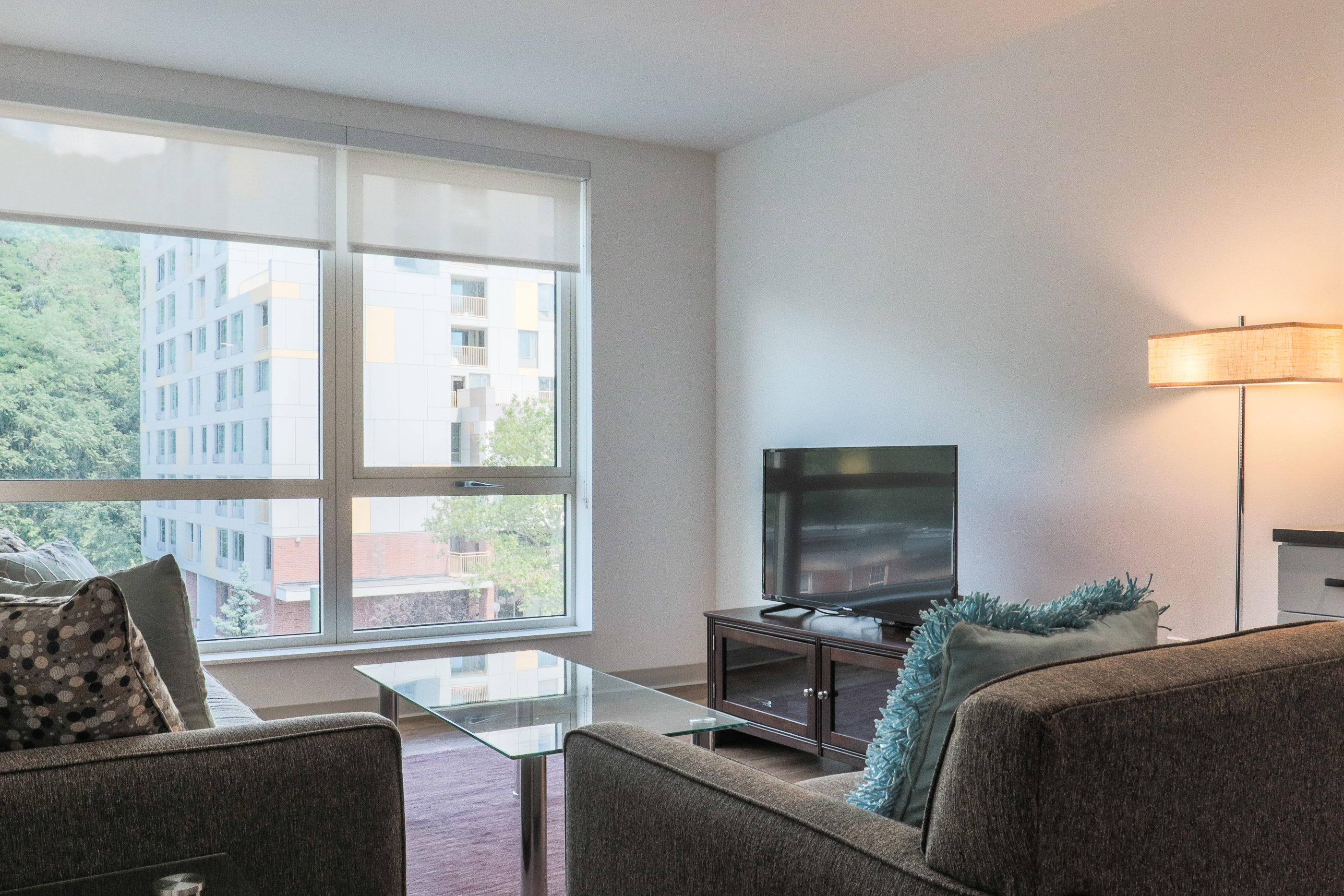 image 8 furnished 1 bedroom Apartment for rent in Jamaica Plain, Boston Area