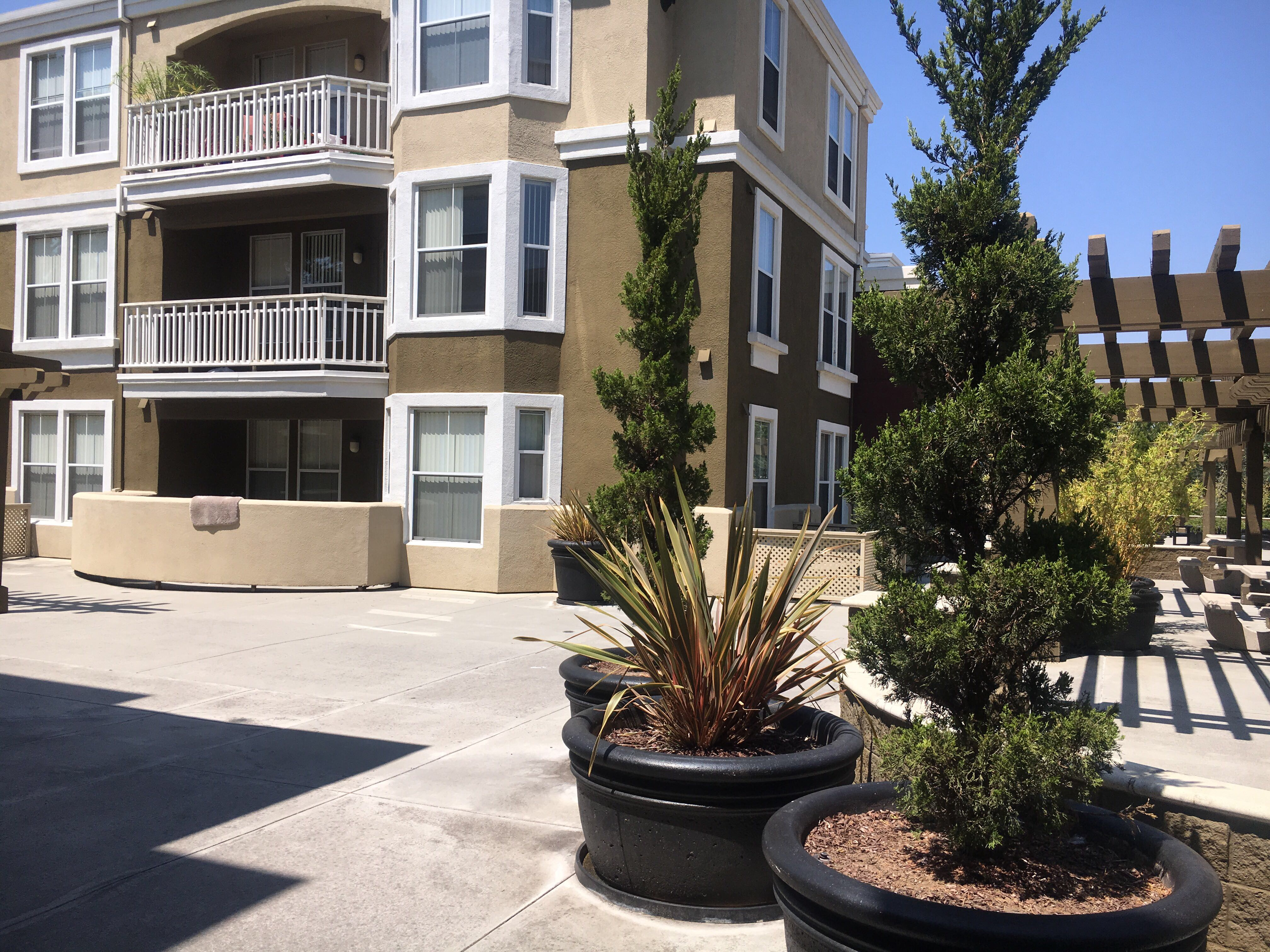 image 2 furnished 2 bedroom Apartment for rent in Cupertino, Santa Clara County
