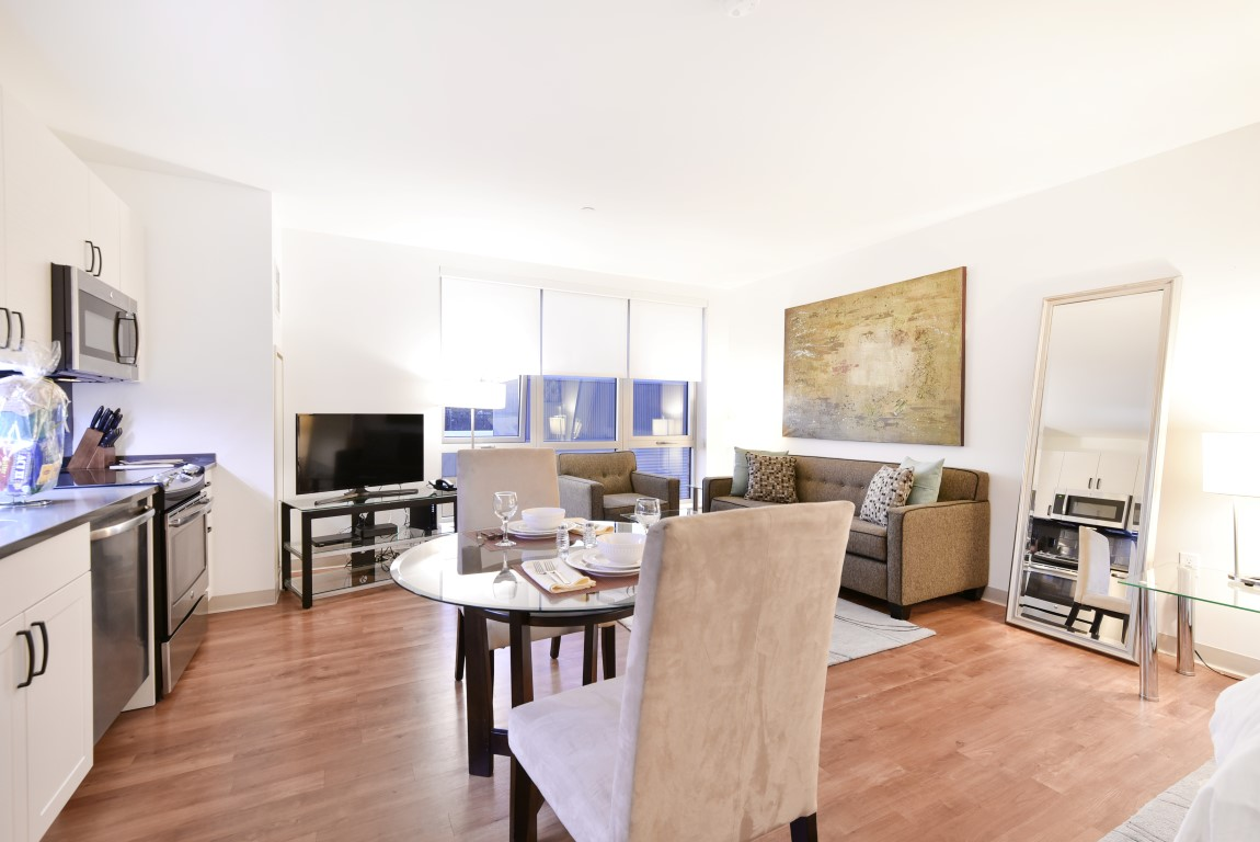 image 3 furnished 1 bedroom Apartment for rent in Jamaica Plain, Boston Area
