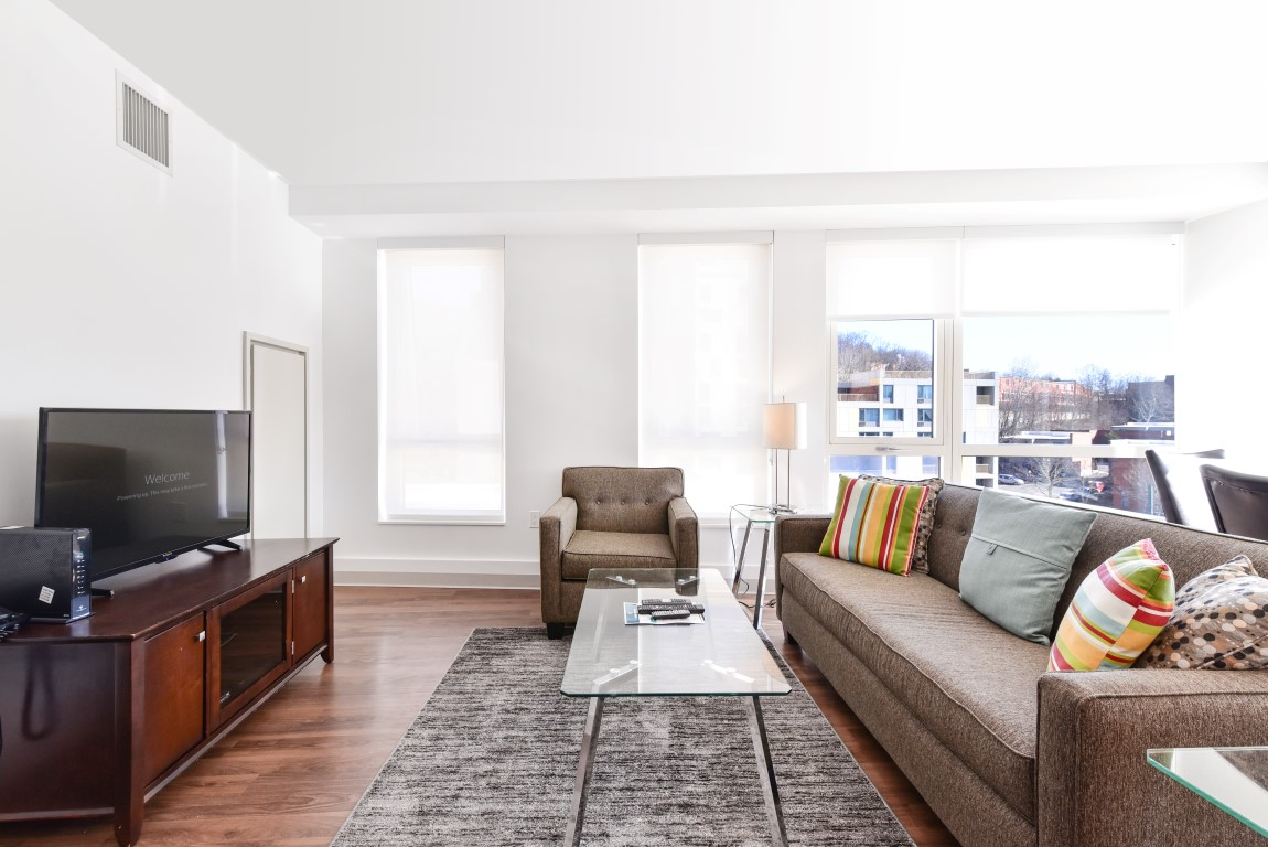 image 7 furnished 1 bedroom Apartment for rent in Jamaica Plain, Boston Area