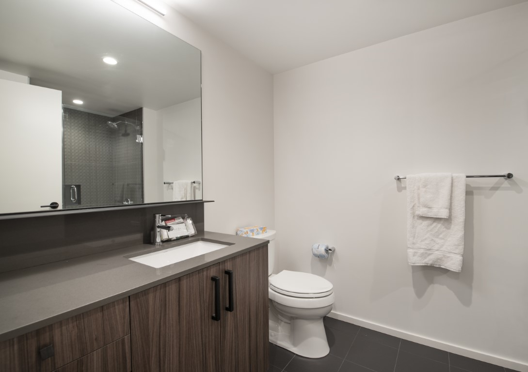 image 10 furnished 1 bedroom Apartment for rent in South End, Boston Area