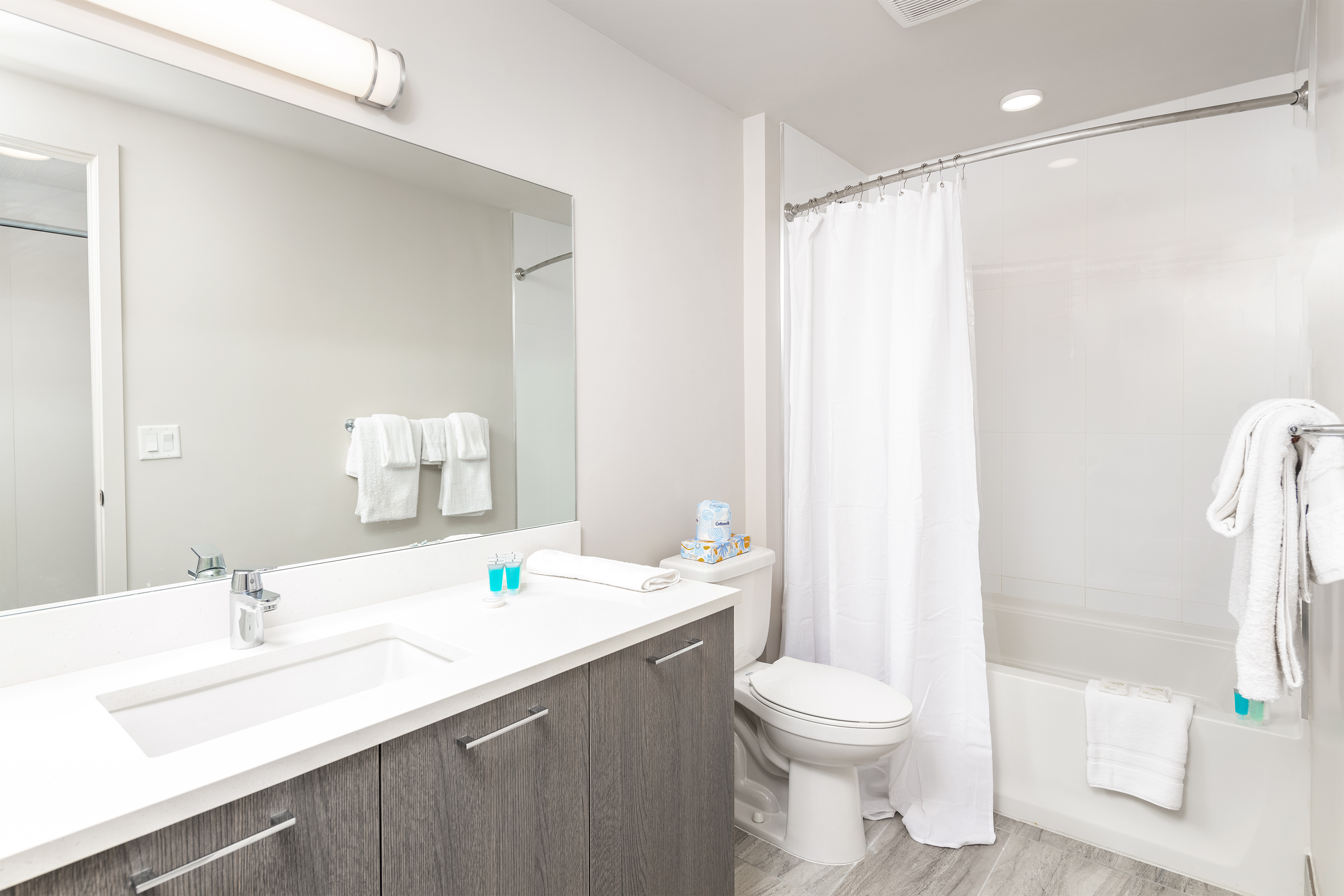 image 4 furnished 2 bedroom Apartment for rent in Downtown, Miami Area